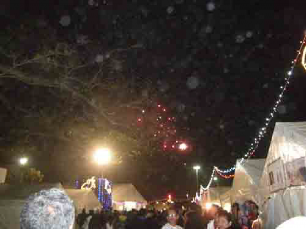SAHMS Durban Diwali Festival 2013